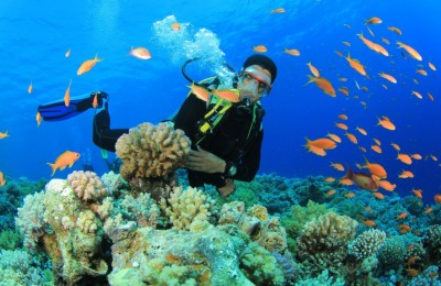 Underwater Diving Is No More A Daunting Task