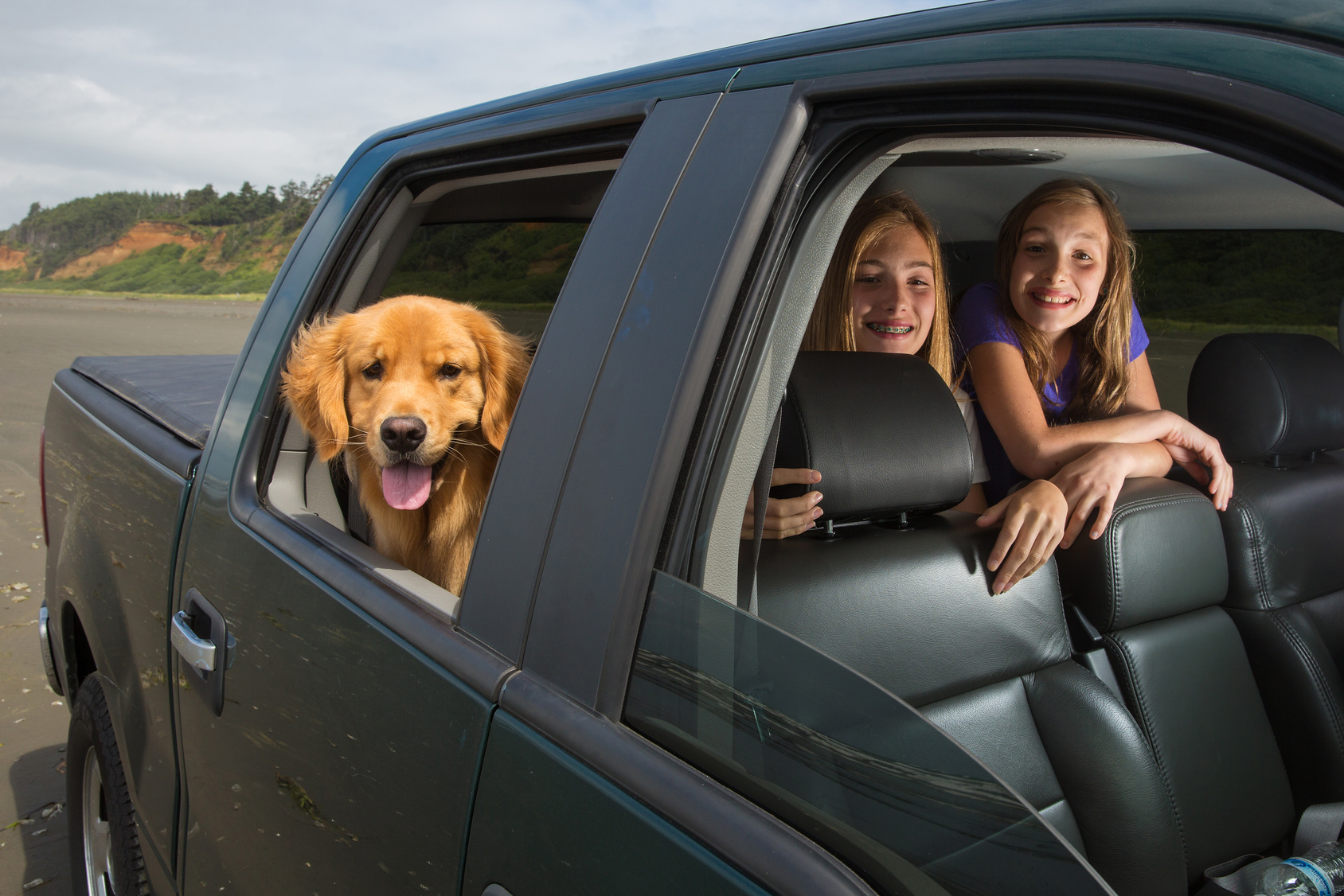 Perfect Tips For Safe & Reliable Relocation Of Your Pet Transport