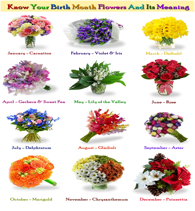 Know Your Birth Month Flowers And Its Meaning