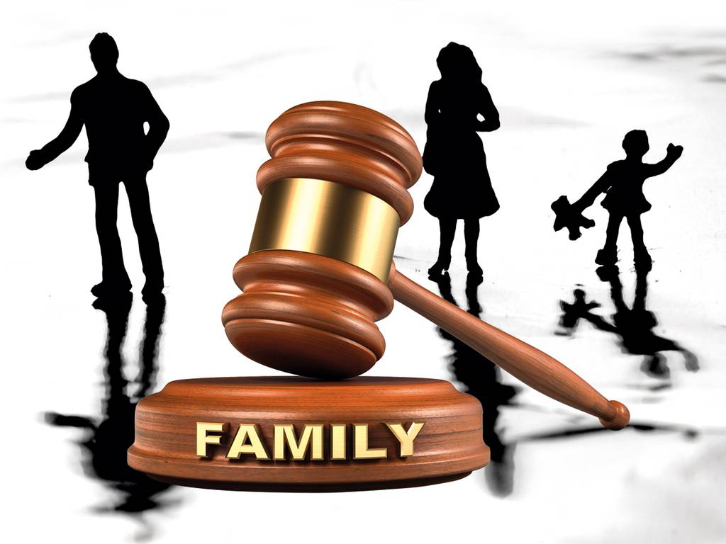 What Family Lawyers Do