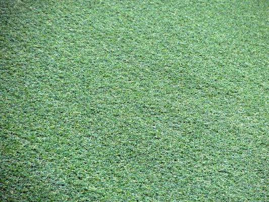Artificial Lawns Are Safe - They Don't Cause Cancer