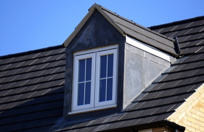 4 Issues That Arise From Mold On Your Roof