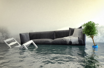 Moldy Carpets, Warped Walls, and Other Types Of Water Damage That Can Devastate Your Home